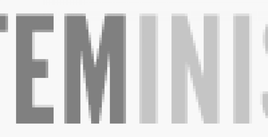 steminist_logo